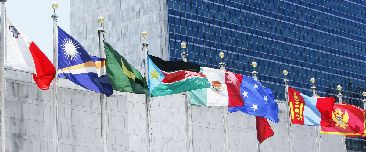 Member States flags outside UN HQ New York